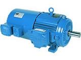 motor-trifasico-inverter-duty-motor-tebc-19