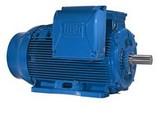 motor-trifasico-linha-w22-plus-12