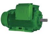 motor-trifasico-linha-w22-premium-11