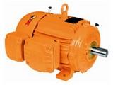 motor-trifasico-linha-wmining-17